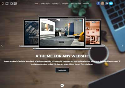 Genesis Website Theme